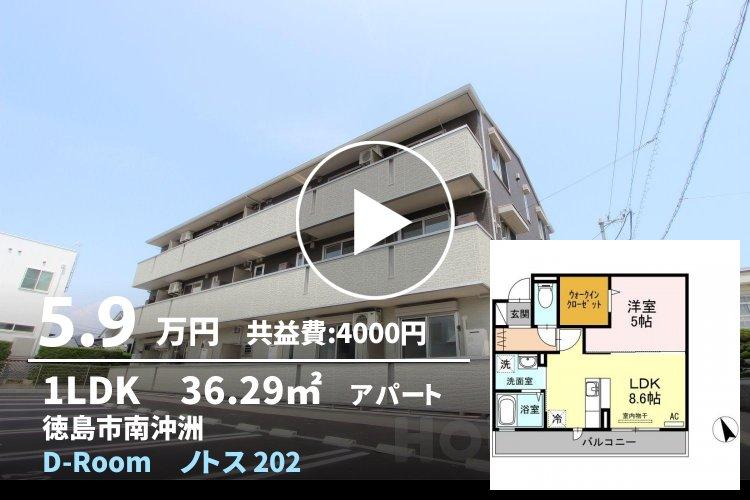 D-Room ノトス 202