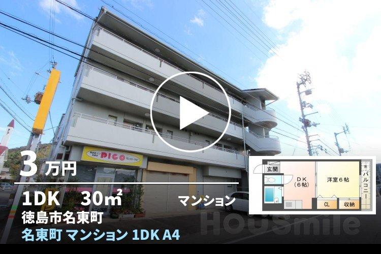 名東町 マンション 1DK A404