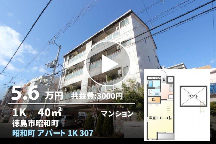 昭和町 アパート 1K 307