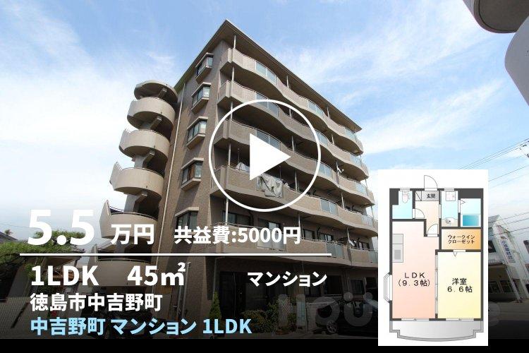 中吉野町 マンション 1LDK 301