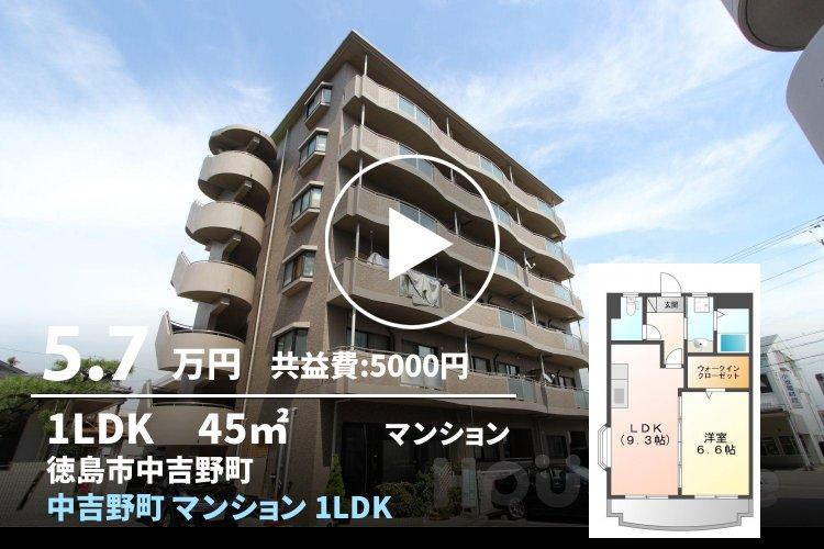 中吉野町 マンション 1LDK 403
