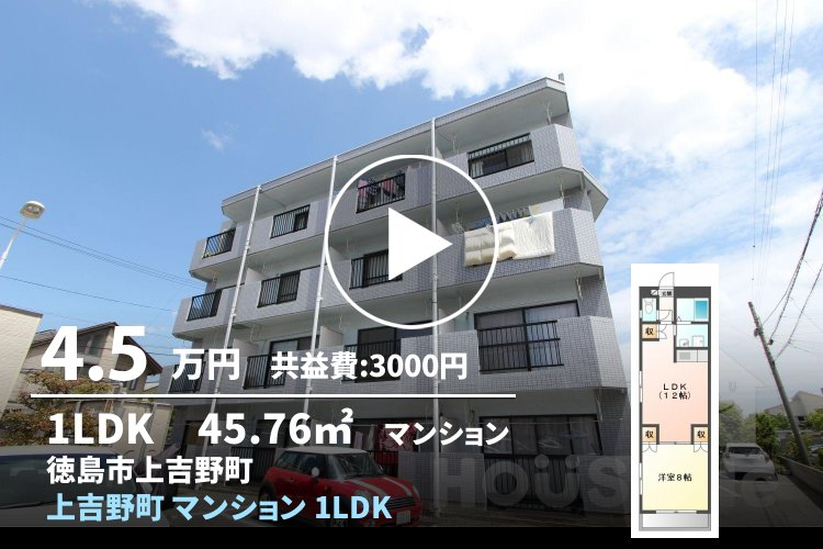 上吉野町 マンション 1LDK 303