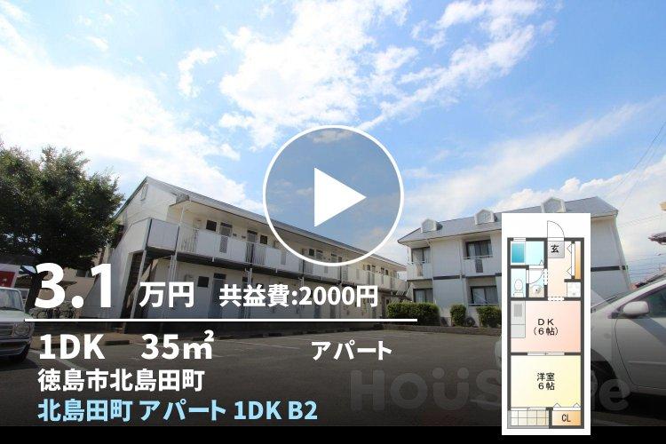 北島田町 アパート 1DK B203