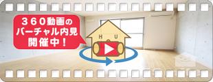 エクラフェリーク 206の360動画